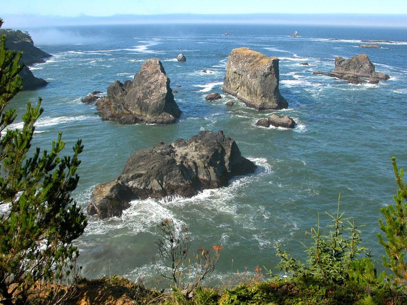 The-Coast